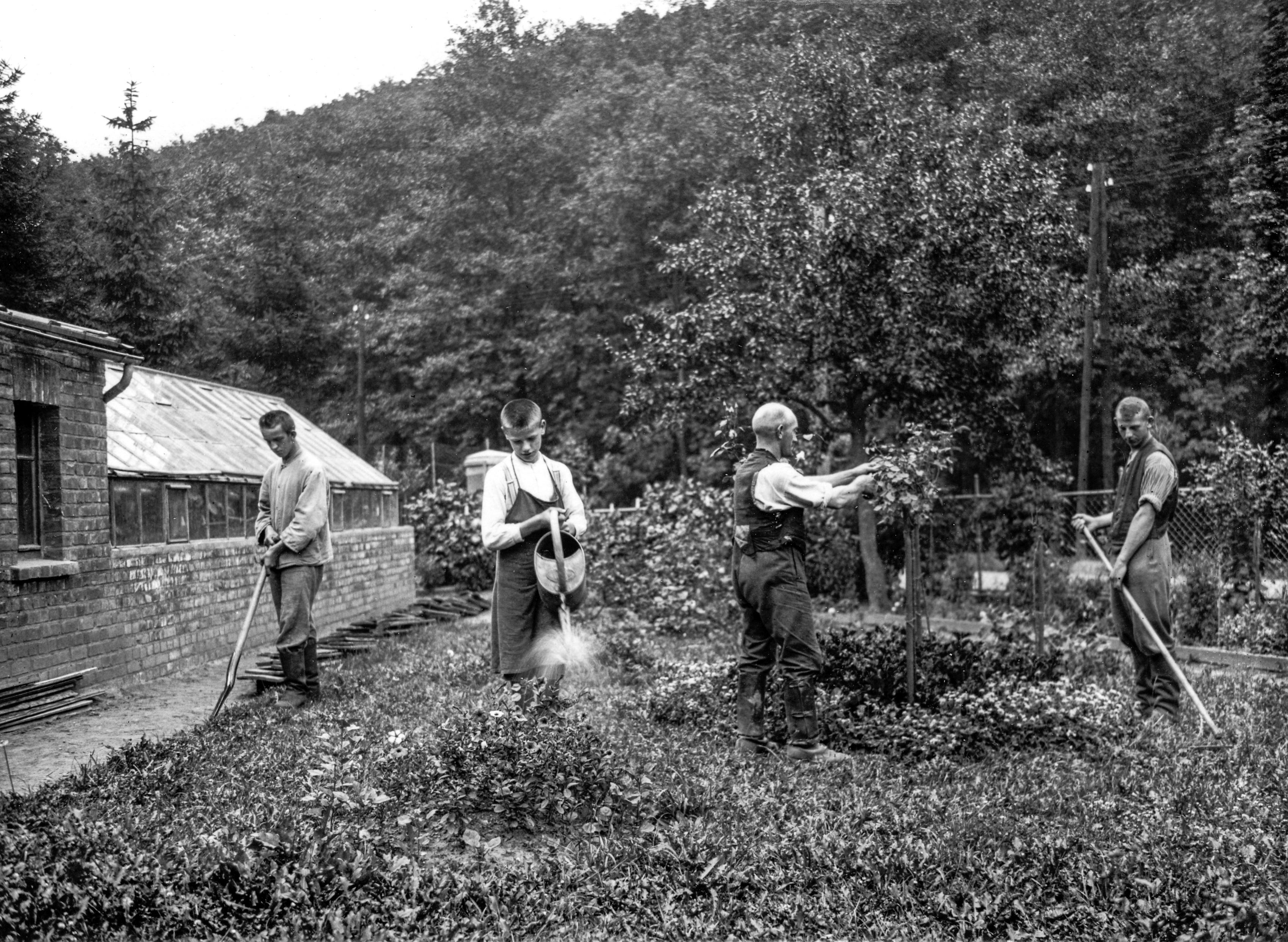 Meine Bio- Gärtnerei in den 30er Jahren
